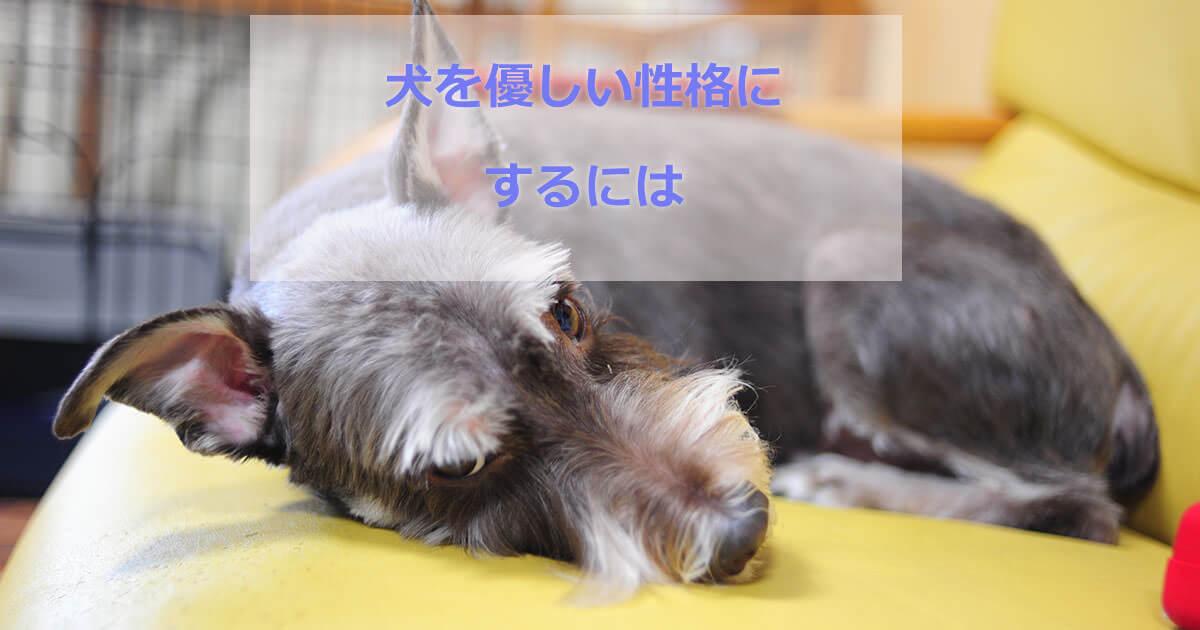 犬を優しい性格にする