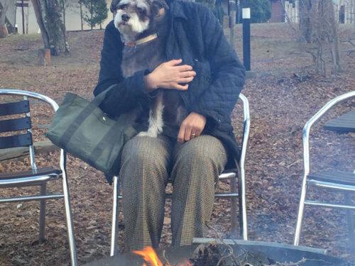 犬と旅行バーベキュー